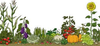 Garden border clipart vector free Free Garden Clipart & Look At Clip Art Images - ClipartLook vector free