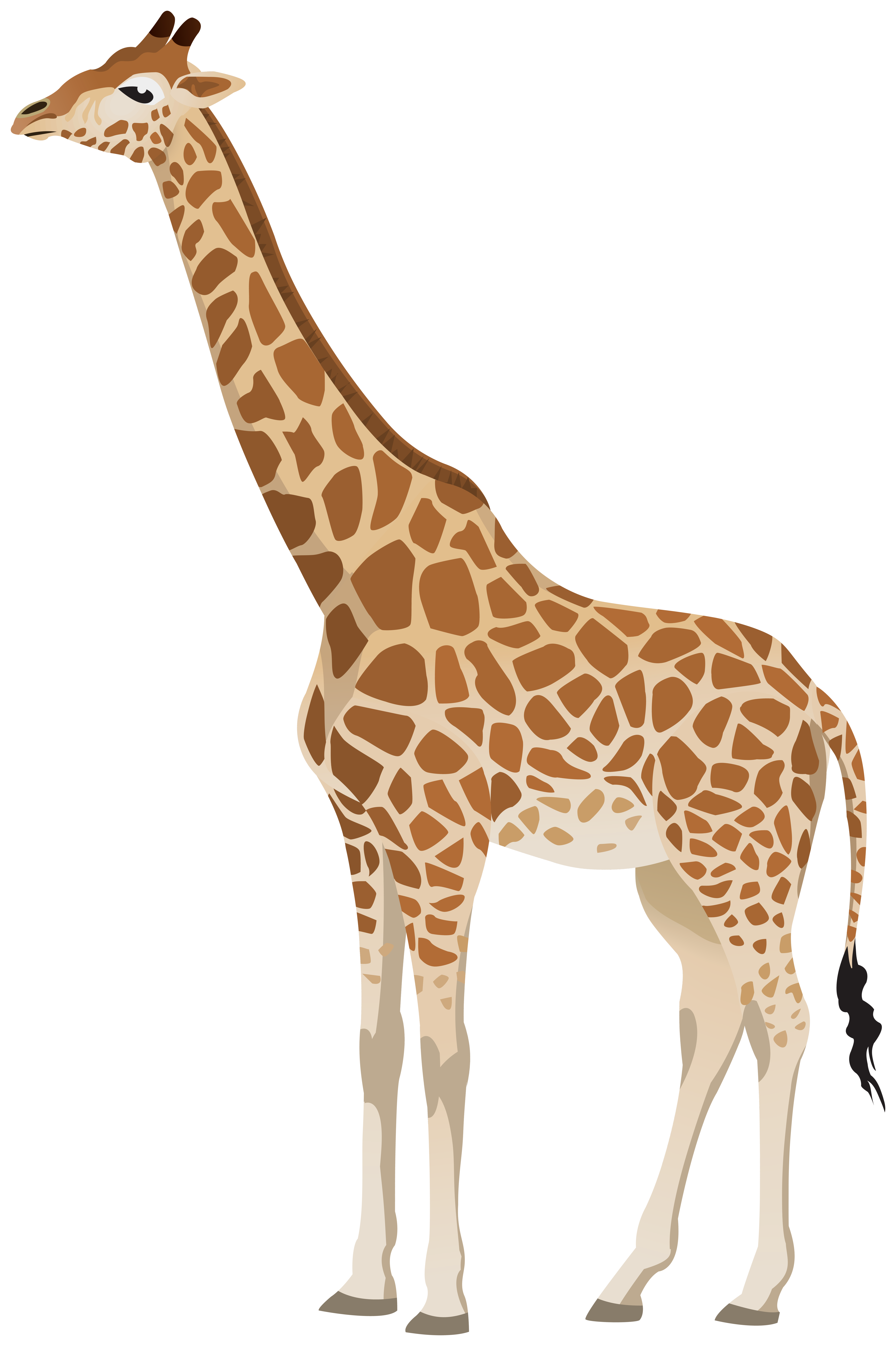 Girrafe clipart clipart transparent library Giraffe Clipart Image | Gallery Yopriceville - High-Quality Images ... clipart transparent library