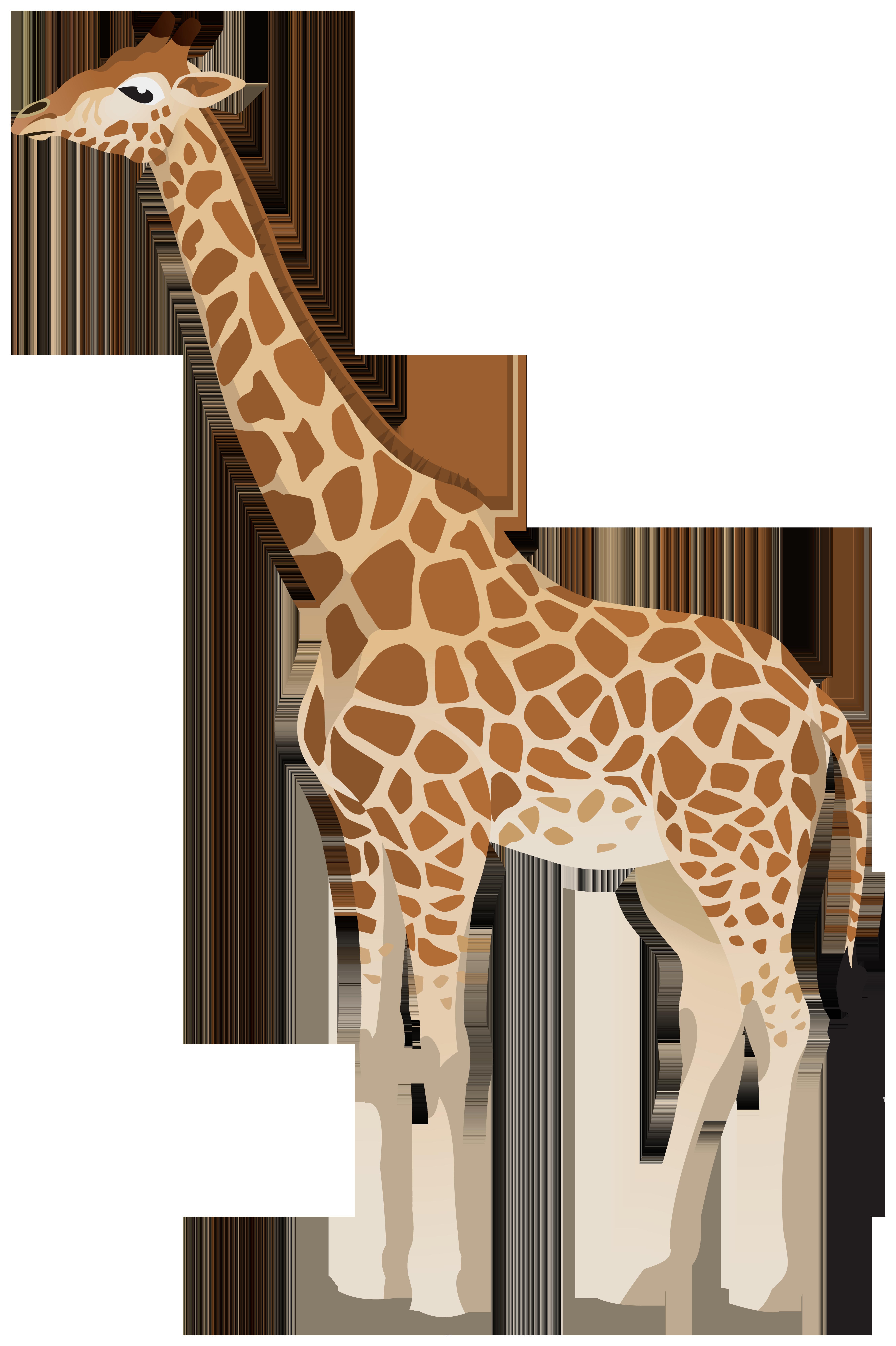 Giraffe image clipart jpg free stock Giraffe Clipart Image | Gallery Yopriceville - High-Quality Images ... jpg free stock