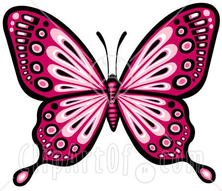 Free google butterfly clipart clip art transparent pretty butterfly clip art - Google Search | * Butterfly ... clip art transparent