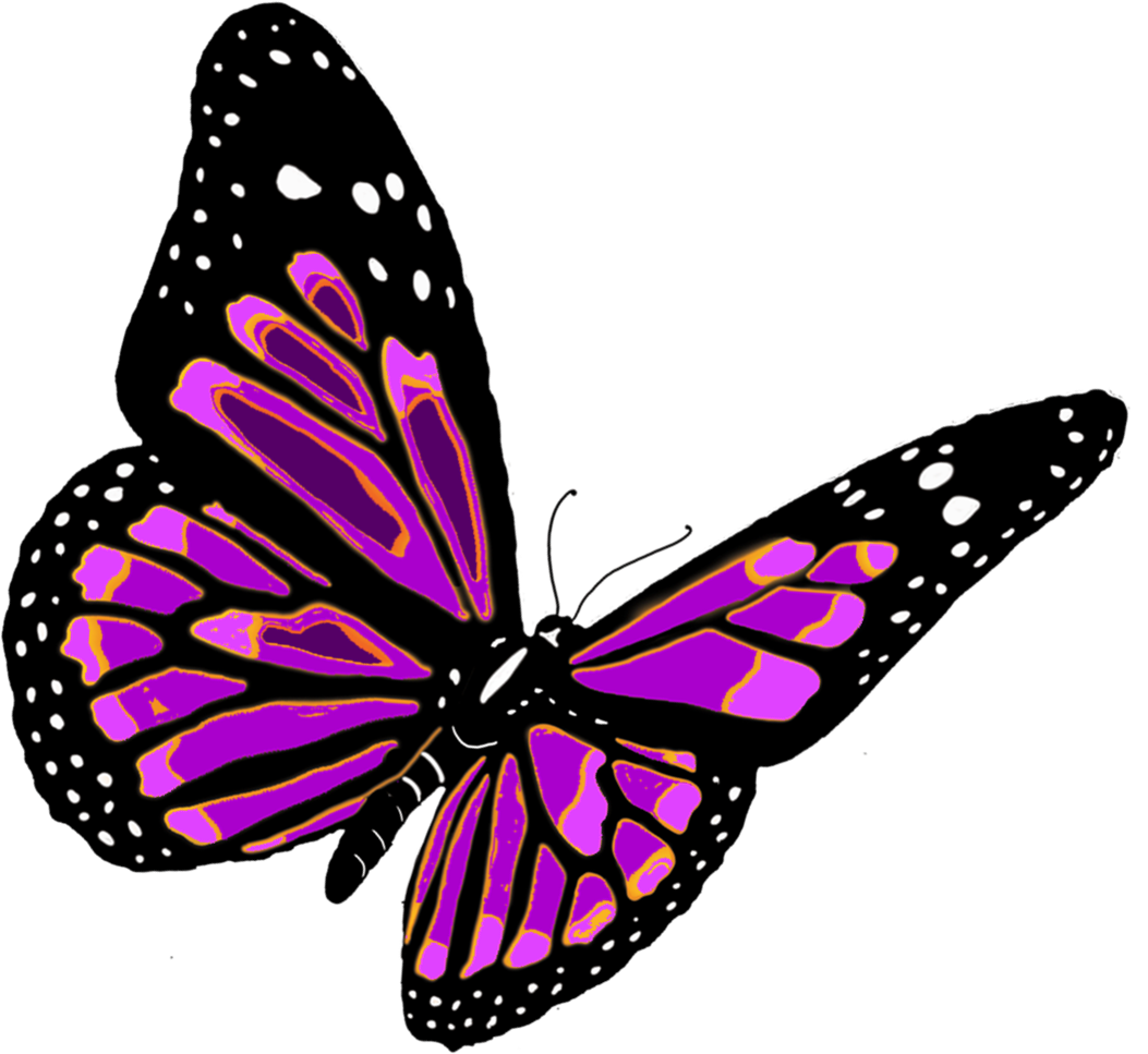 Free google butterfly clipart picture transparent library butterfly - Google Search | The Prince of Butterflies | Pinterest ... picture transparent library