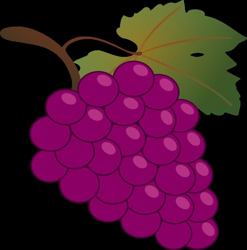 Free grapes clipart. Grape jean victor balin