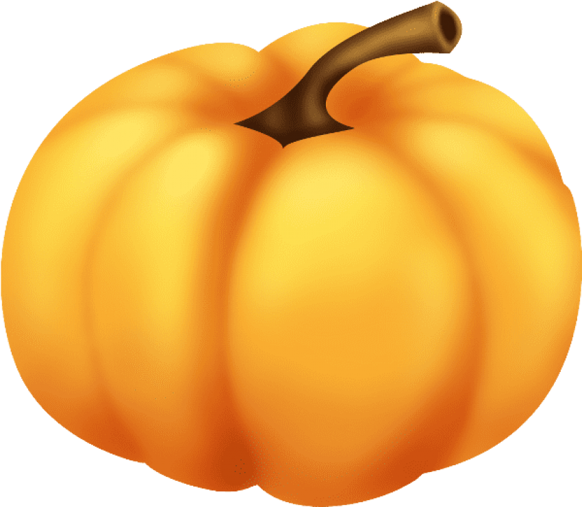 Free green pumpkin seed clipart free pumpkin png - Free PNG Images   TOPpng free