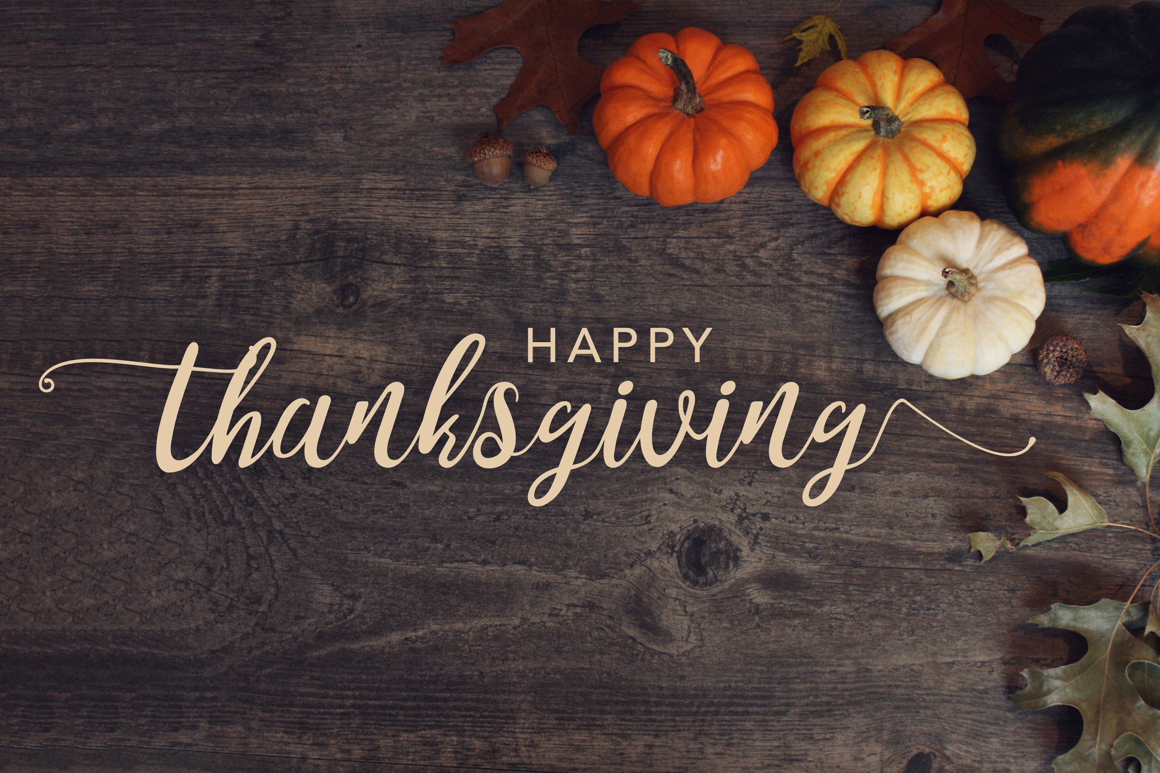 Free happy thanksgiving clipart to friends and family banner royalty free stock 71+ Happy Thanksgiving Clipart Free Black and White, Banner, Border ... banner royalty free stock