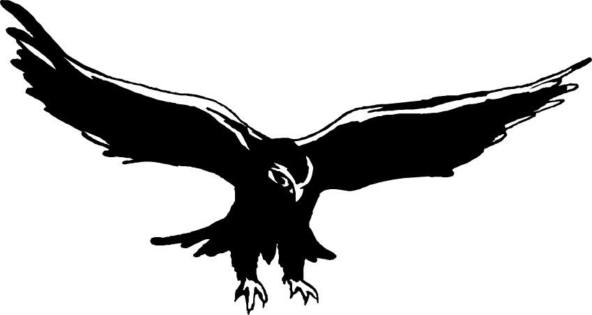 Free hawk clipart freeuse Free Hawk Cliparts, Download Free Clip Art, Free Clip Art on Clipart ... freeuse