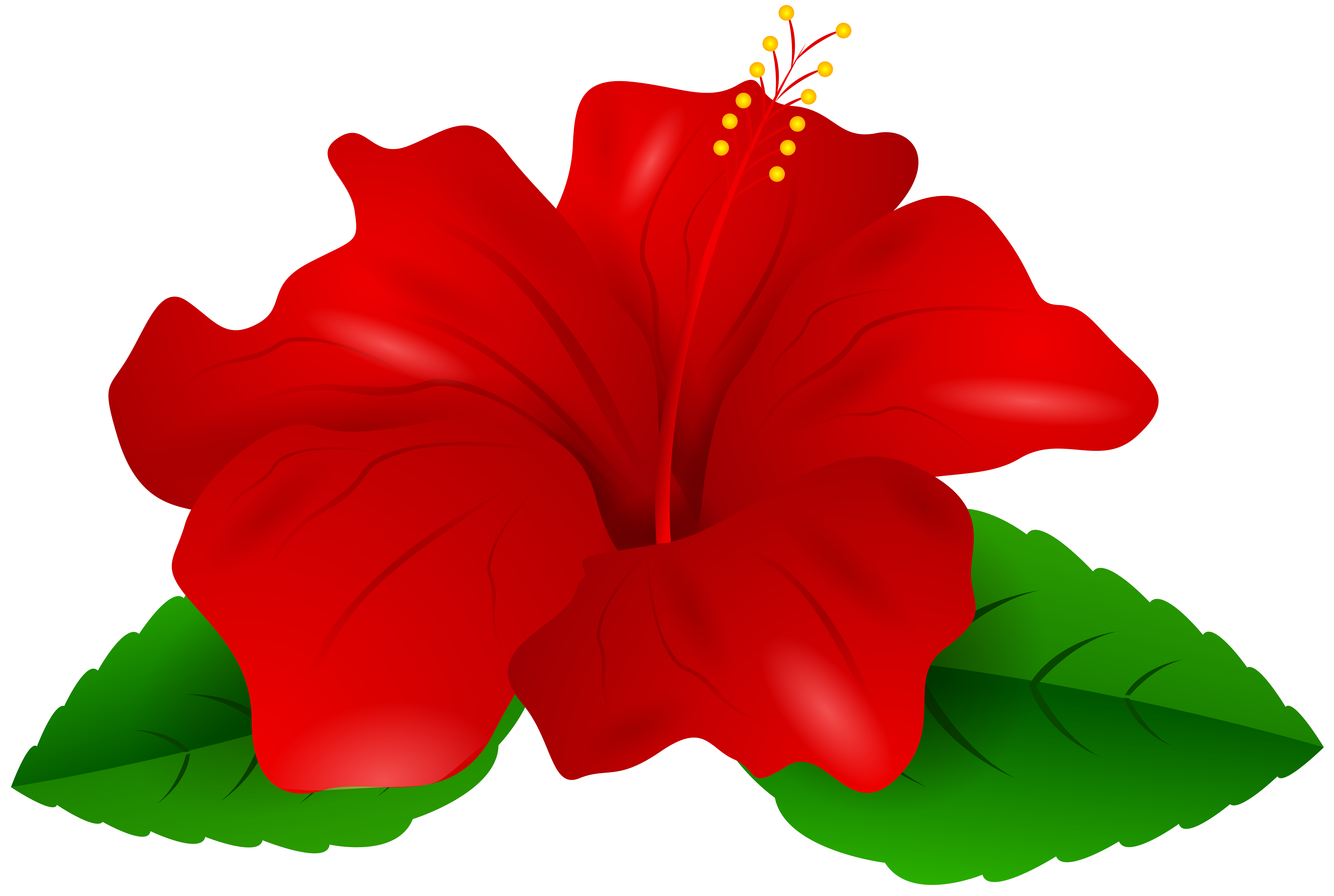Free hibiscus flower clipart clip freeuse Clipart Hibiscus Flower Image collections - Flower Wallpaper HD clip freeuse