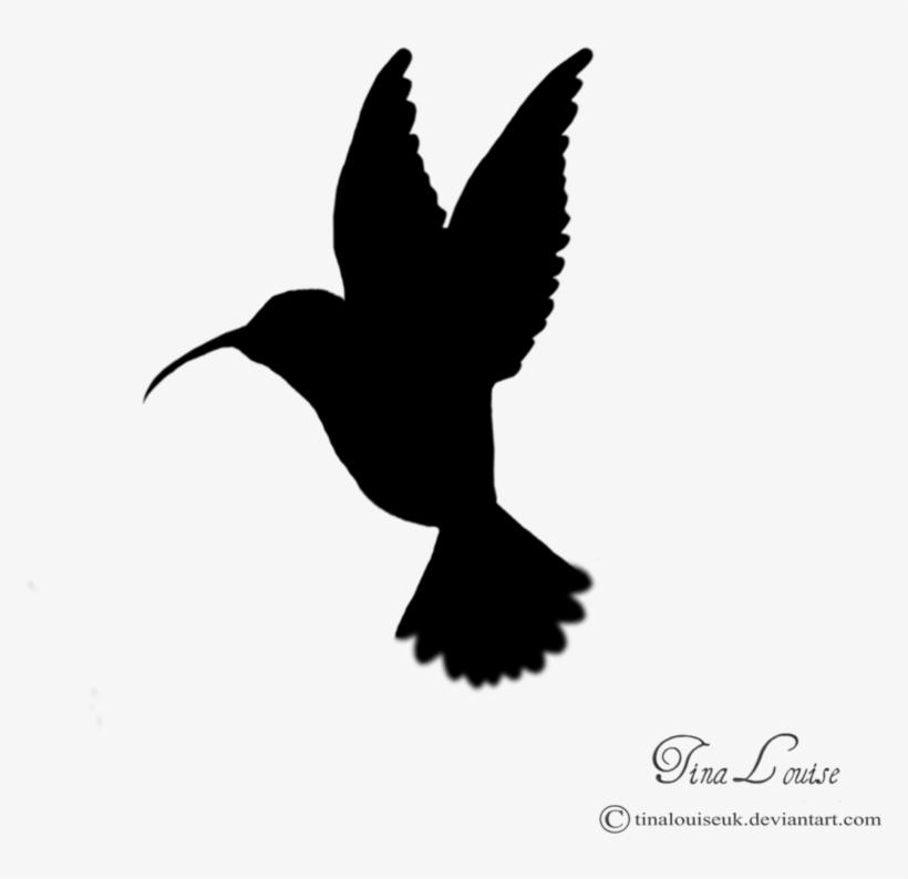 Free hummingbird silhouette clipart clip art freeuse Hummingbird Silhouette Clip Art - Hummingbird Silhouette - Free ... clip art freeuse