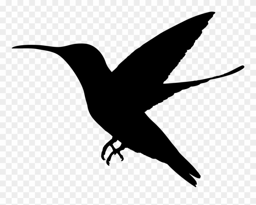 Free hummingbird silhouette clipart jpg download Hummingbird Silhouette Clip Art Www Pixshark Com Pigeon ... jpg download