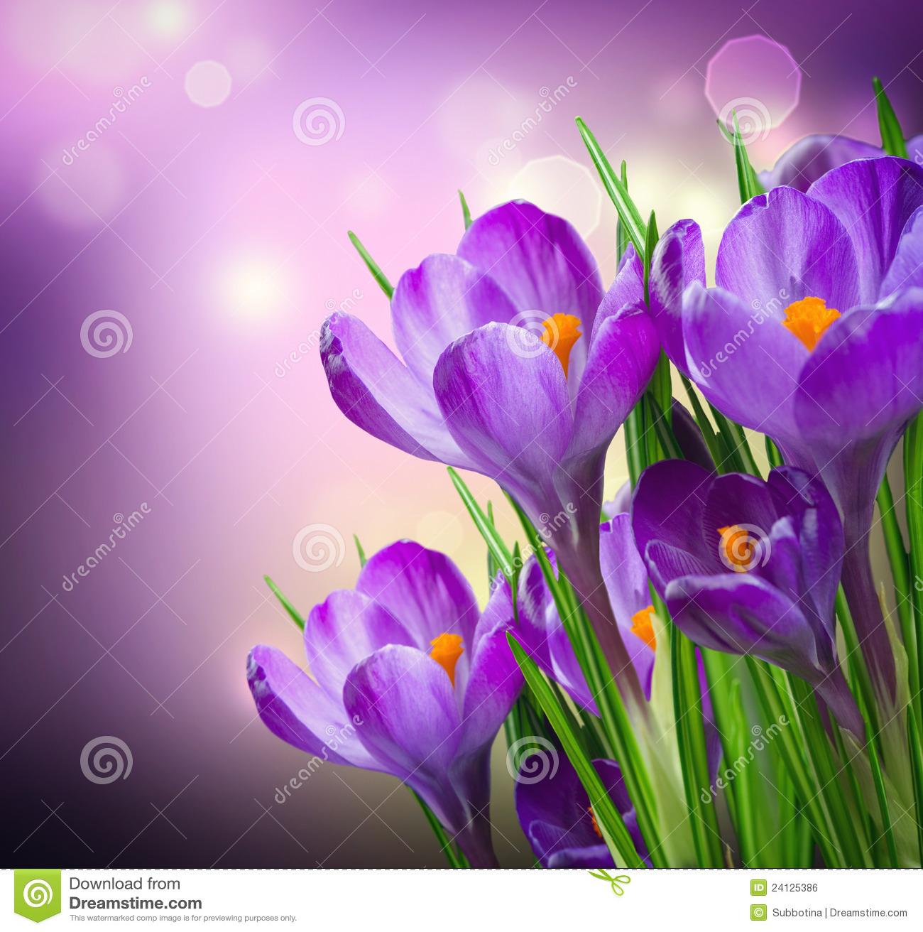 Free image flowers svg freeuse Free spring flower pictures - ClipartFest svg freeuse
