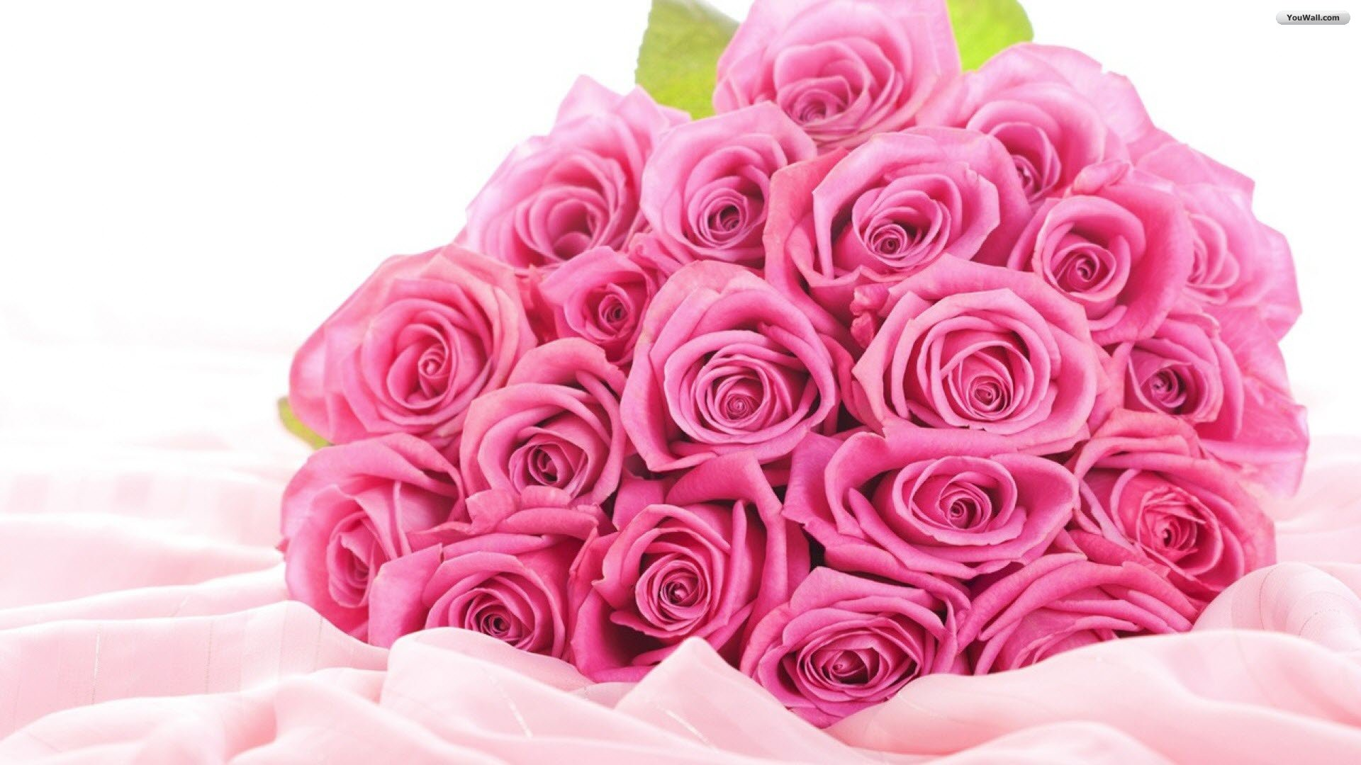 Free images of valentine flowers clip valentine's day flowers pictures clip