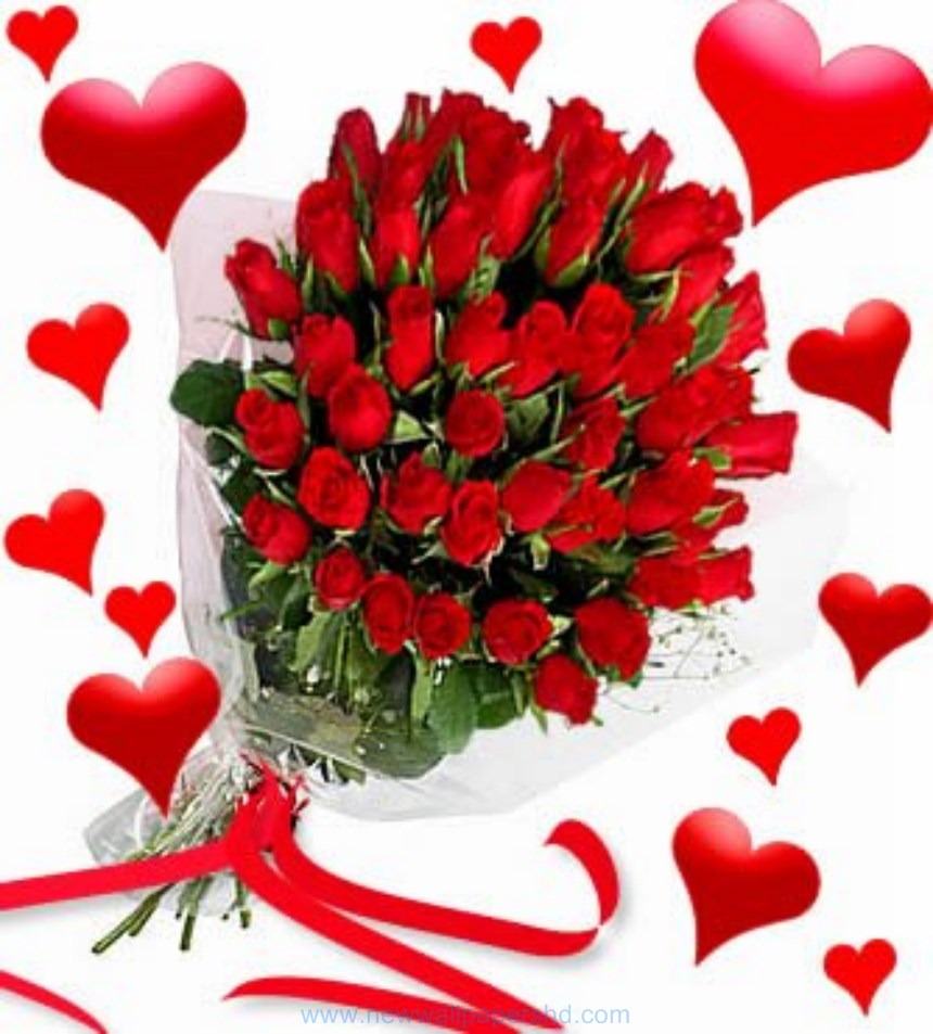 Free images of valentine flowers graphic transparent stock Valentine day flowers HD Images Photos Pics   HD Walls graphic transparent stock