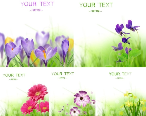 Free images spring flowers clipart library library Spring flower images free stock photos download (13,377 Free stock ... clipart library library