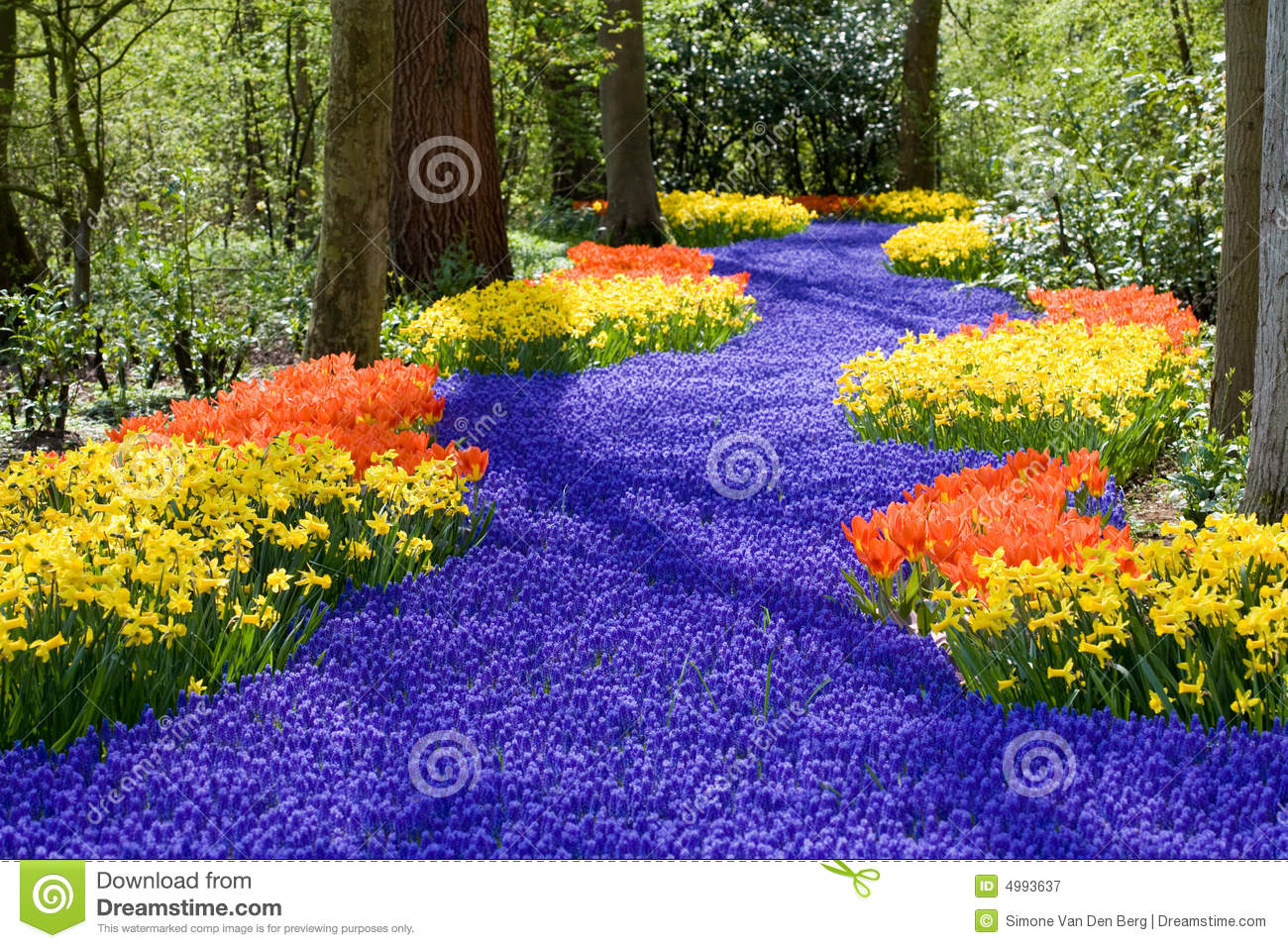Free images spring flowers banner royalty free Spring Flowers Stock Photos, Images, & Pictures - 694,949 Images banner royalty free