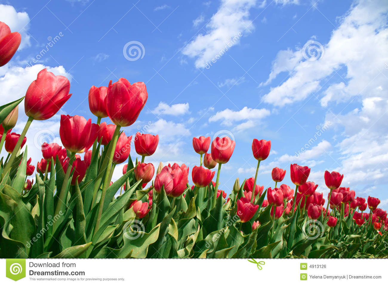 Free images spring flowers clip art royalty free Free spring flowers pictures - ClipartFest clip art royalty free