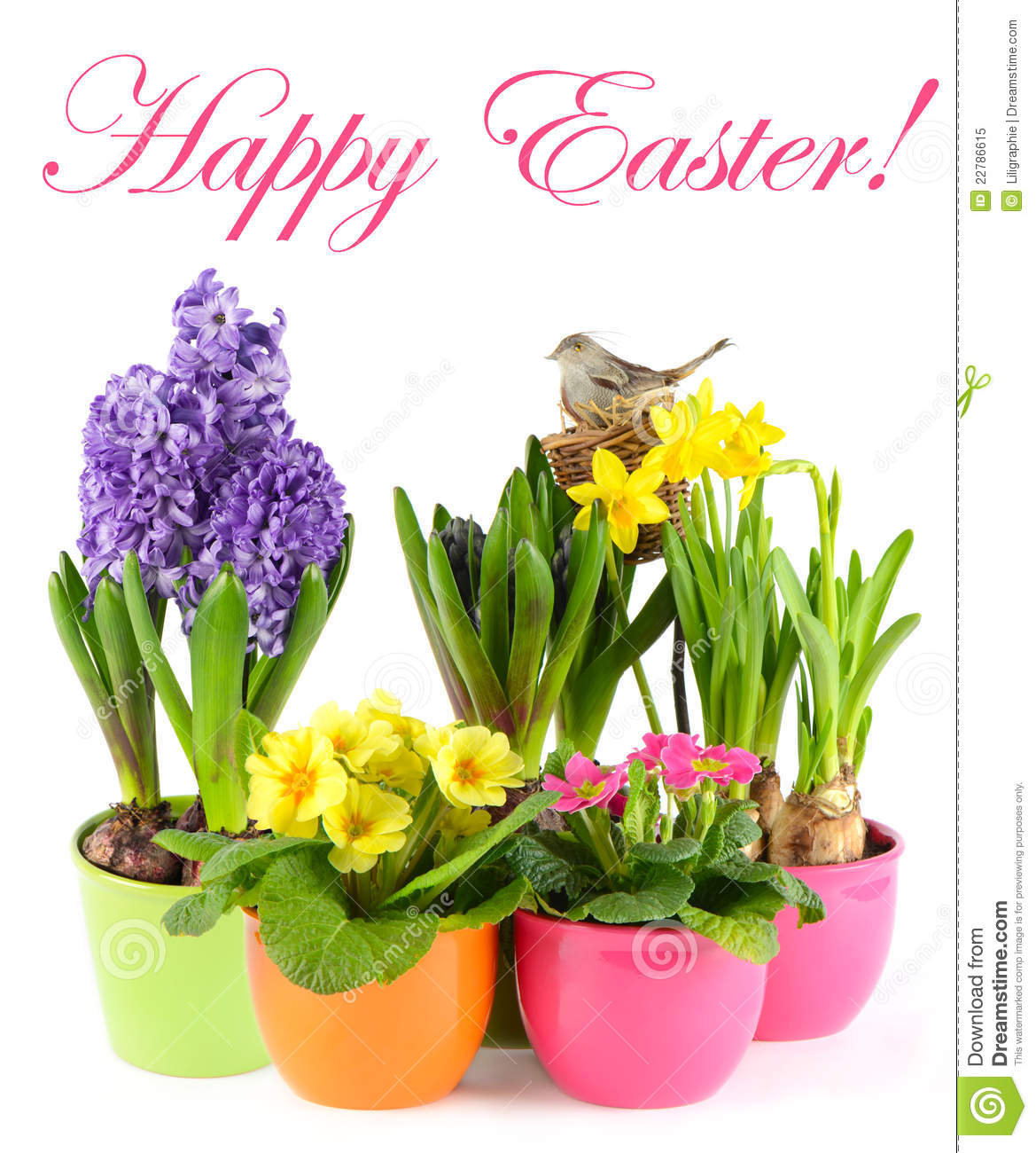 Free images spring flowers image stock Fresh Spring Flowers With Birds Nest. Easter Royalty Free Stock ... image stock