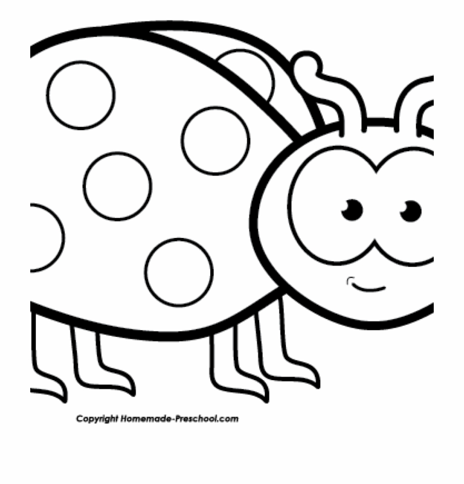 Images black and white. Free ladybug clipart downloads