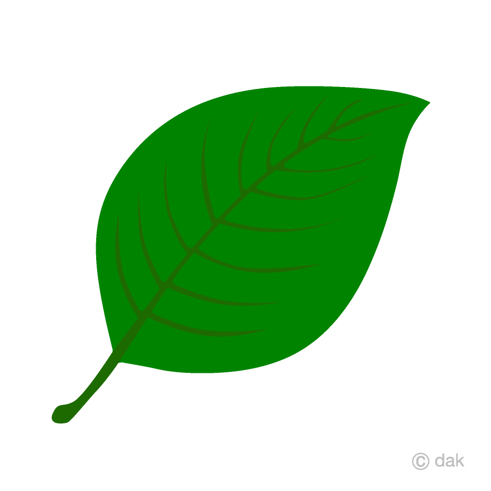 Free leaf images clipart graphic freeuse download Green Leaf Clipart Free Picture|Illustoon graphic freeuse download