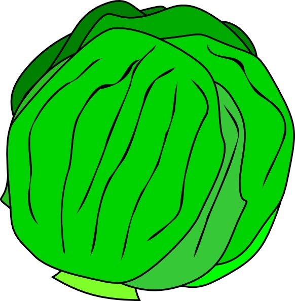 Free clipart lettuce png library Whole Lettuce clip art Free vector in Open office drawing svg ( .svg ... png library