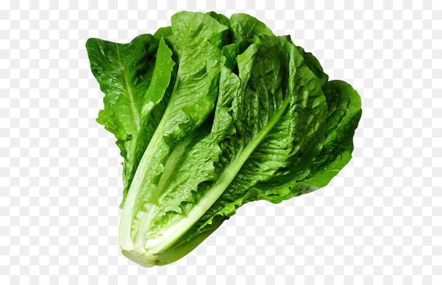 Free lettuce clipart. Collard greens transparent clip