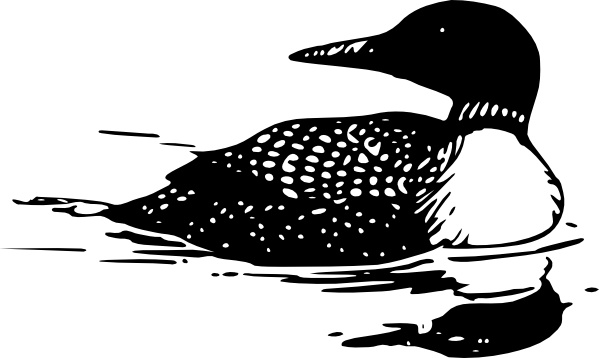 Common clip art vector. Free loon clipart