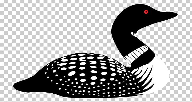 Free loon clipart. Common drawing silhouette png