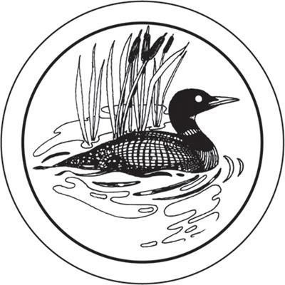 Free loon clipart graphic transparent Loon Clipart   Free download best Loon Clipart on ClipArtMag.com graphic transparent