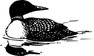 Free loon clipart png free stock 79+ Loon Clip Art   ClipartLook png free stock