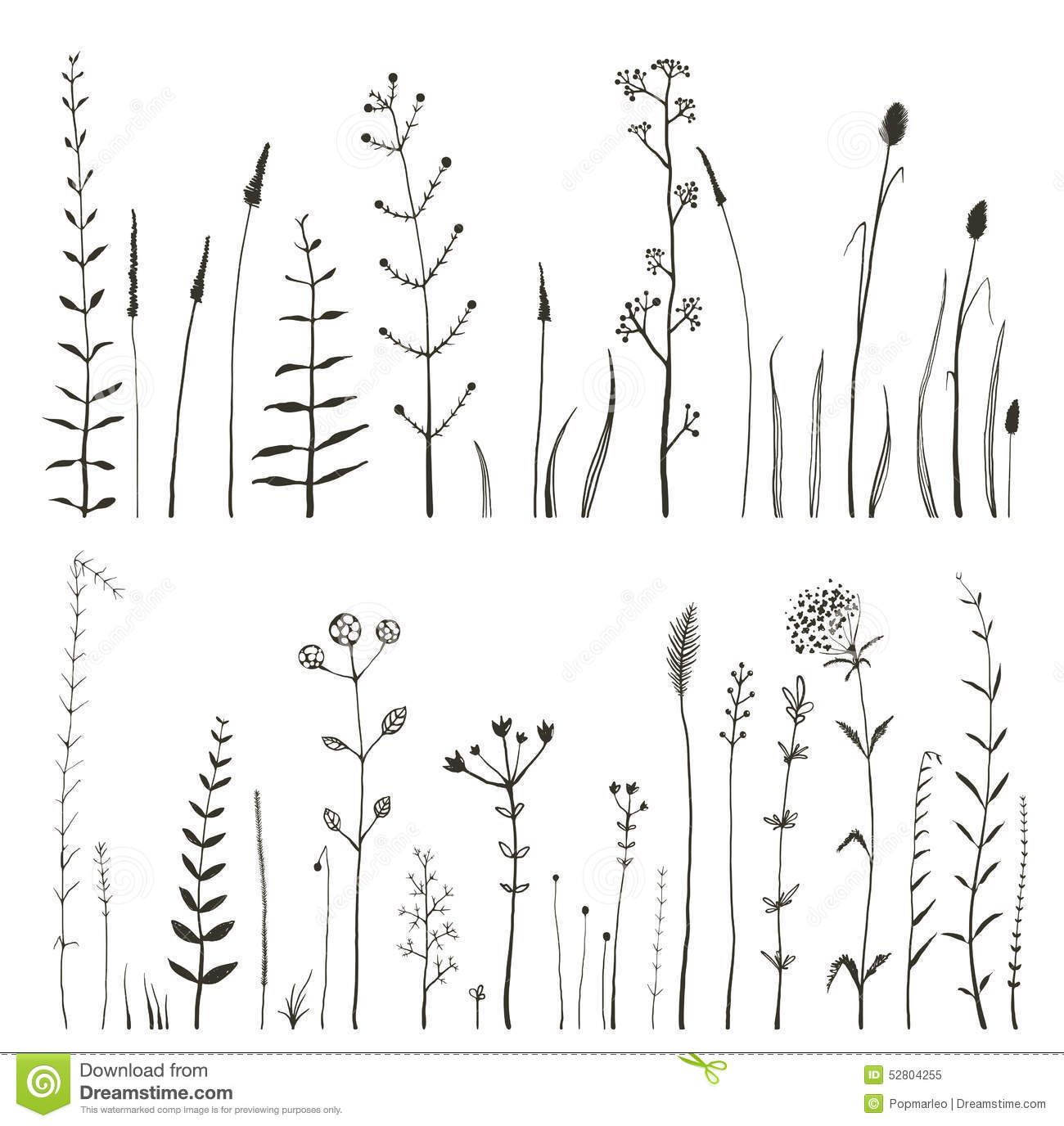Free miniature narrow tree flowers clipart black and white svg library stock Sketchy Wild Field Flowers and Grass on White Royalty Free Stock ... svg library stock