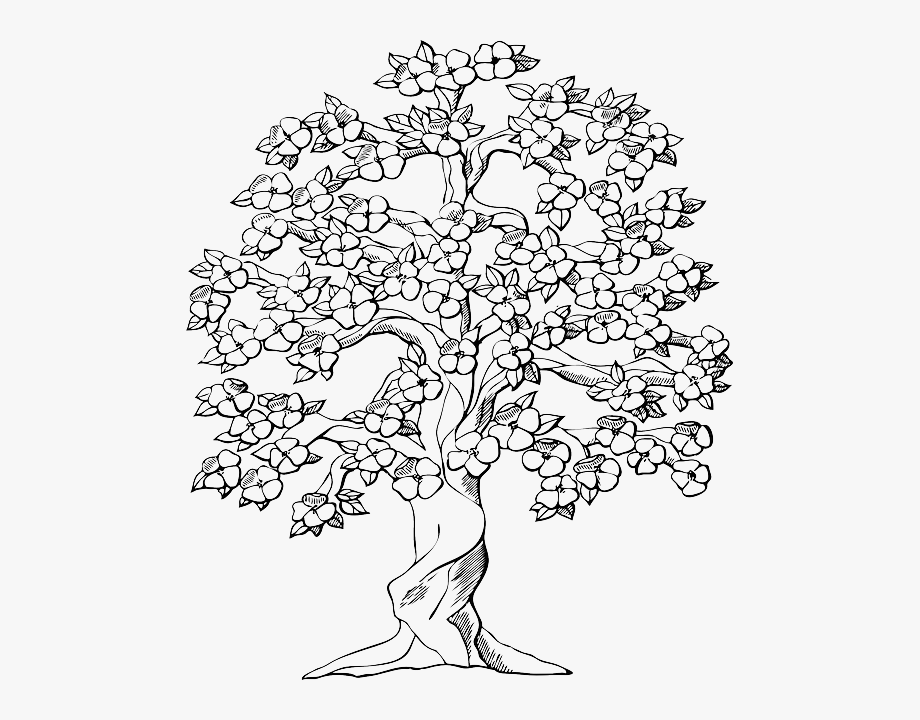 Free miniature narrow tree flowers clipart black and white royalty free stock Free Vector Graphic - Cherry Tree Clipart Black And White #2640238 ... royalty free stock