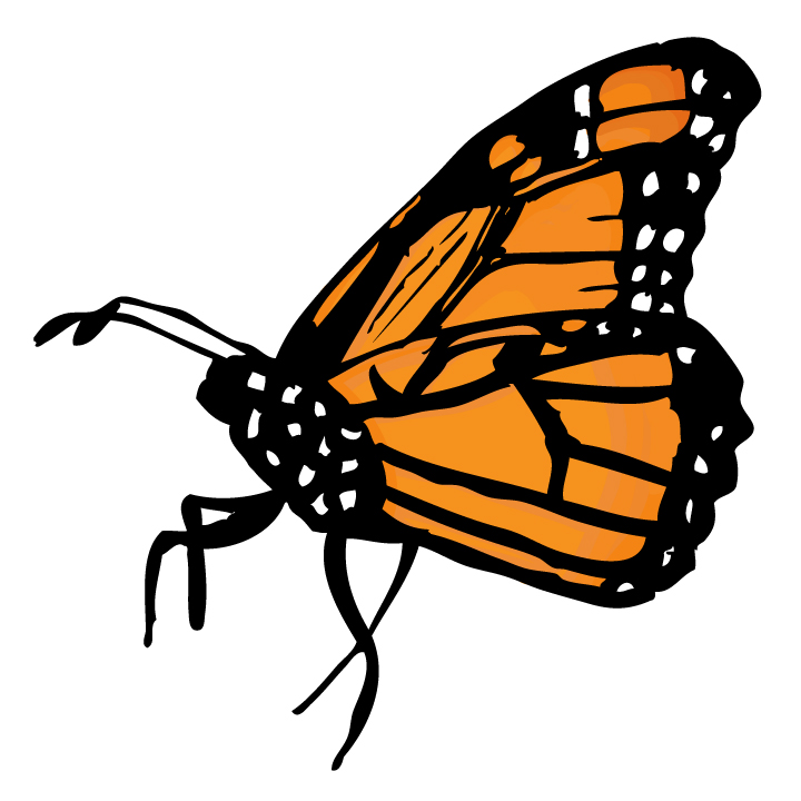 Free monarch butterfly clipart. Cartoon download clip art