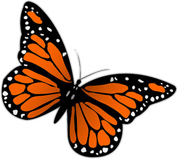 Free monarch butterfly clipart. Graphics images of butterflies