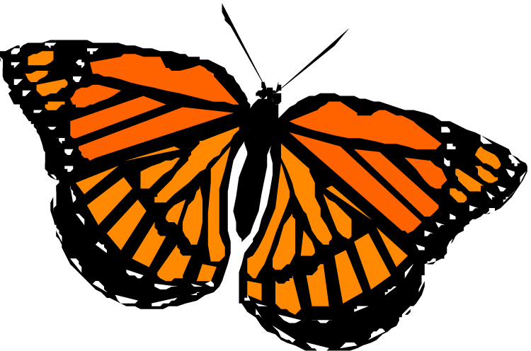 clipartlook. Free monarch butterfly clipart