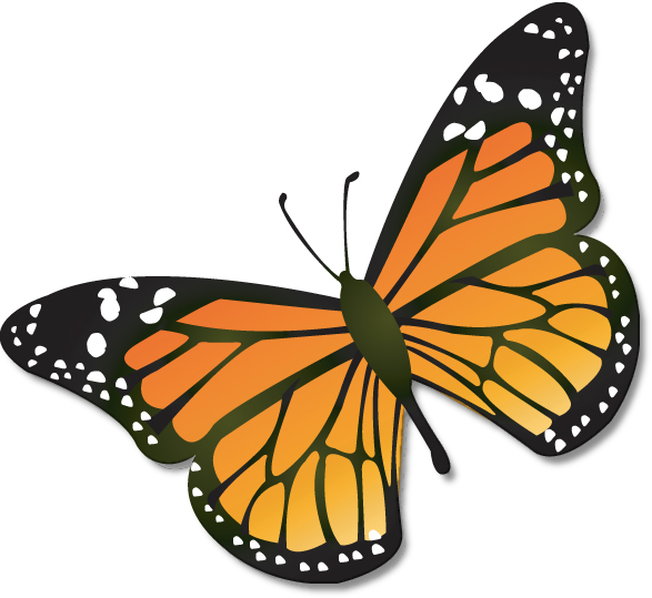 Cartoon download clip art. Free monarch butterfly clipart