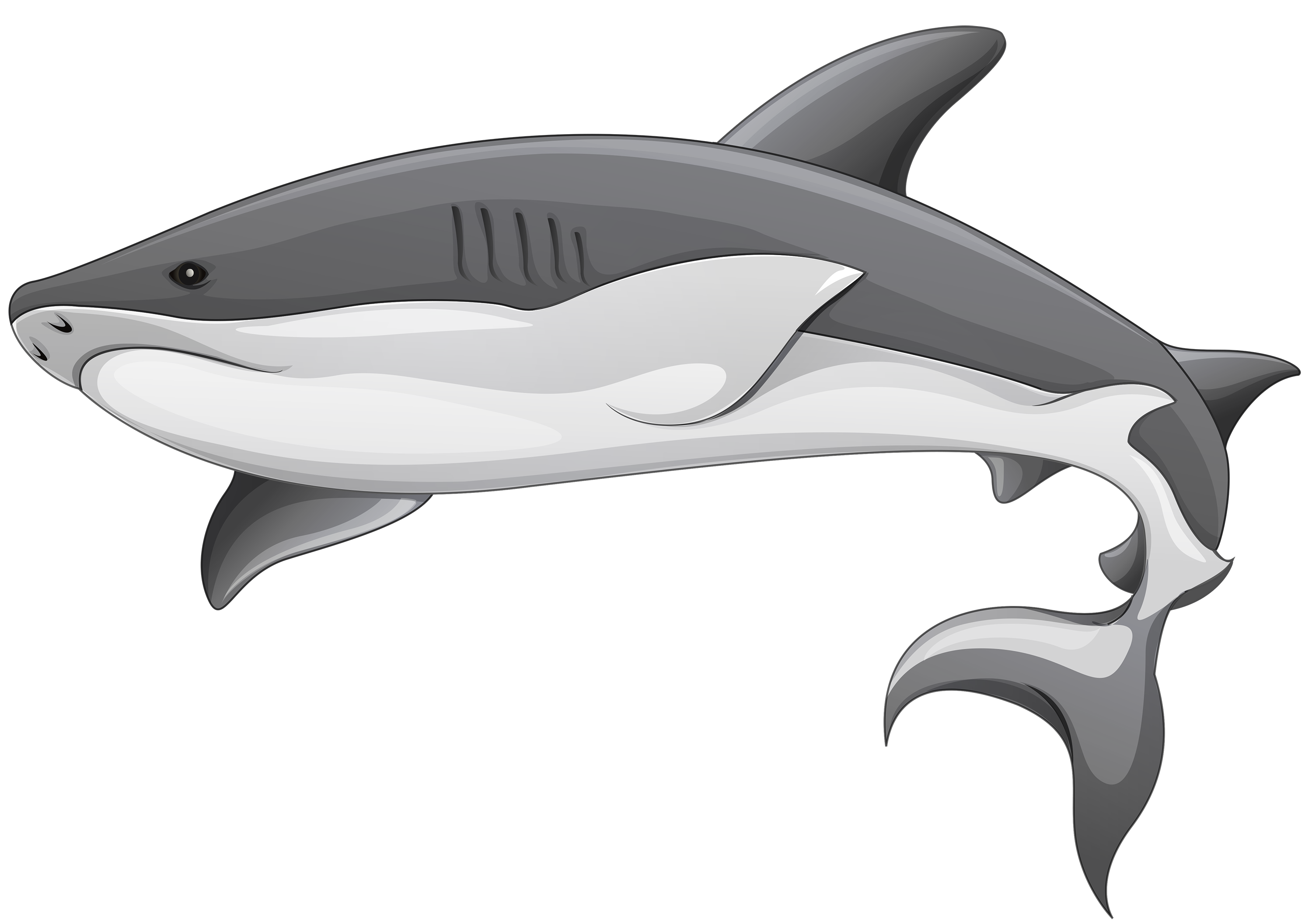 Grey fish clipart png transparent stock Grey Shark PNG Clipart - Best WEB Clipart png transparent stock