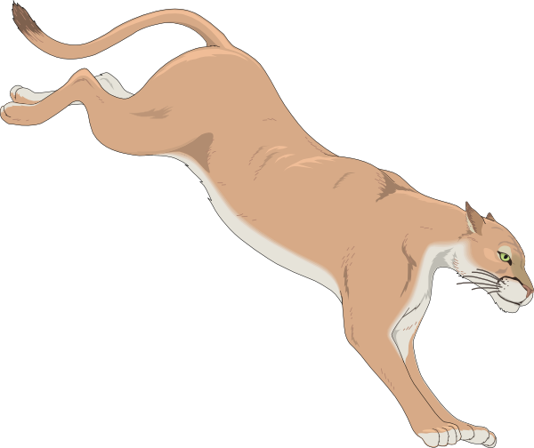 Free mountain lion clipart graphic freeuse 100+ Mountain Lion Clipart | ClipartLook graphic freeuse