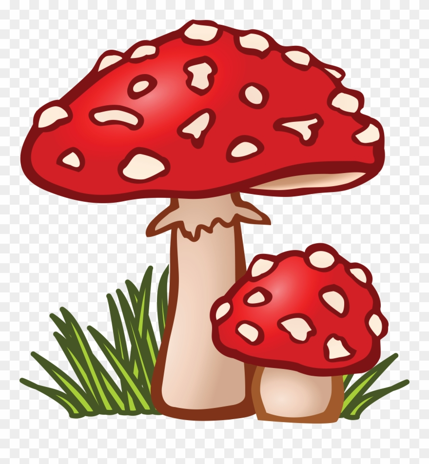 Free mushroom clipart png black and white download Free Clipart Of Mushrooms - Mushroom Clipart - Png Download (#289800 ... png black and white download