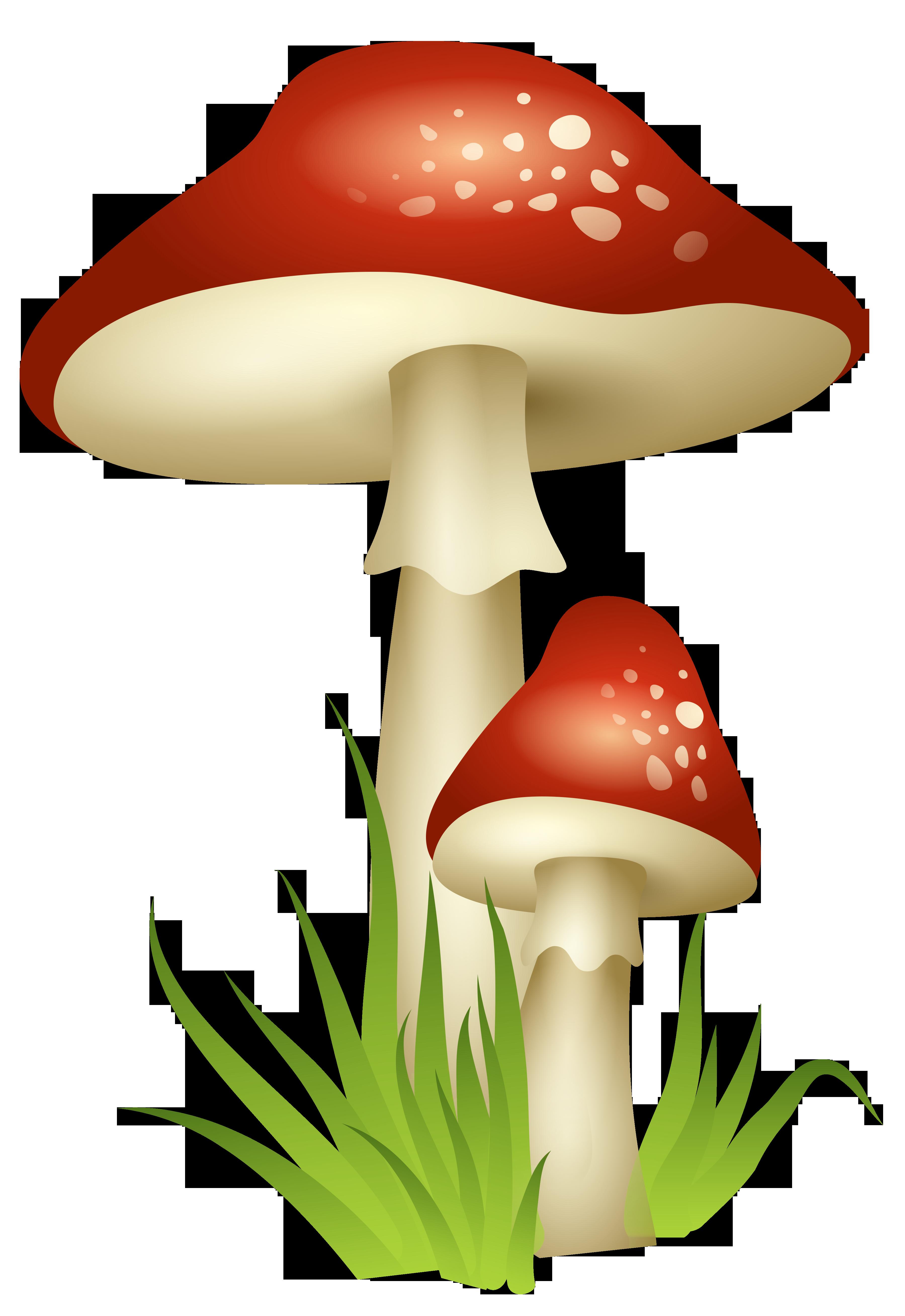 Free mushroom clipart free download Free Magic Mushrooms Cliparts, Download Free Clip Art, Free Clip Art ... free download