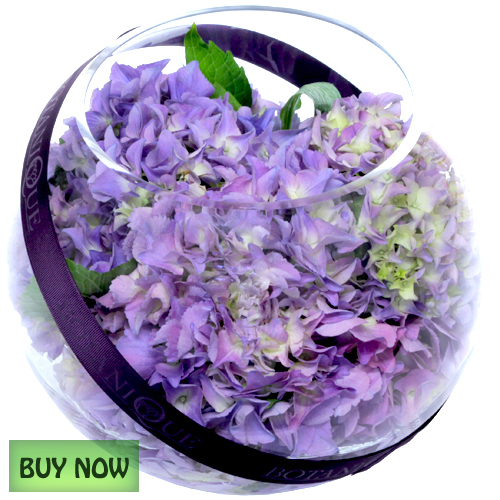 Free online flowers pictures clip freeuse Flowers Online Gold Coast Australia Delivery January - Botanique ... clip freeuse