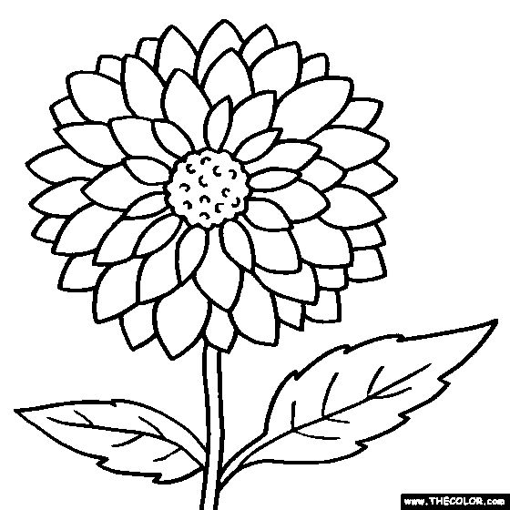 Free online flowers pictures vector download coloring pages | Flower Coloring Pages | Color Flowers Online ... vector download
