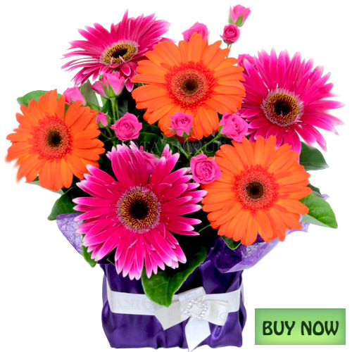 Free online pictures of flowers png transparent stock flowers online cheap - The Best Flowers Ideas png transparent stock