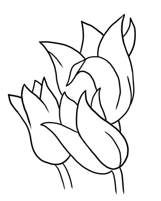 Free outline pictures of flowers png black and white library Butterfly Outline Clipart | Clipart Panda - Free Clipart Images png black and white library