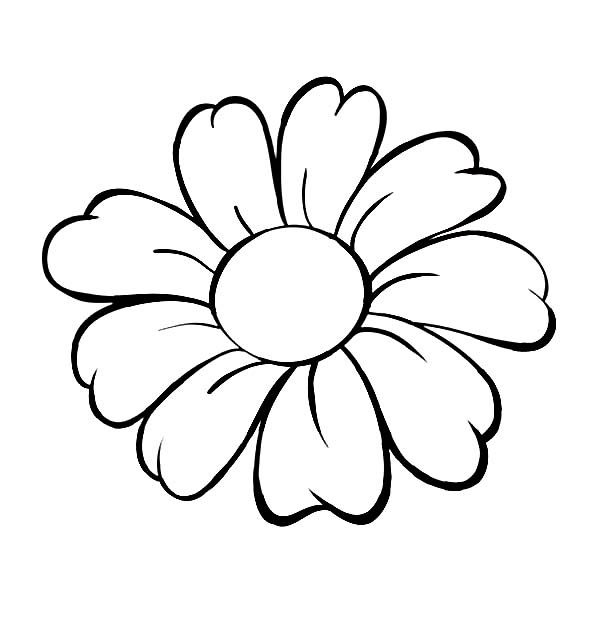Free outline pictures of flowers png transparent download 17 Best ideas about Flower Outline on Pinterest | Flower outline ... png transparent download