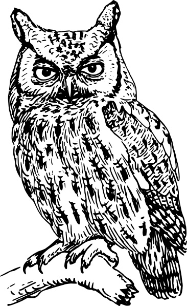 Free owl clipart black and white image stock Owl clip art Free vector in Open office drawing svg ( .svg ) vector ... image stock