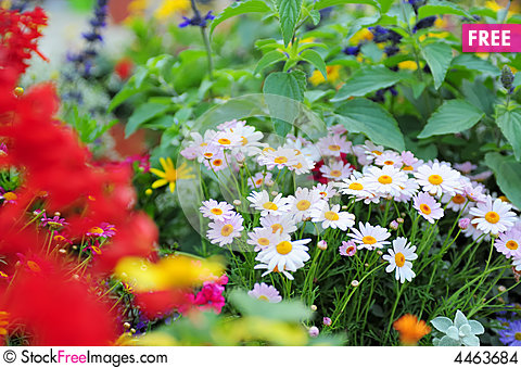 Free photos spring flowers clip art Spring Flowers - Free Stock Photos & Images - 4463684 ... clip art