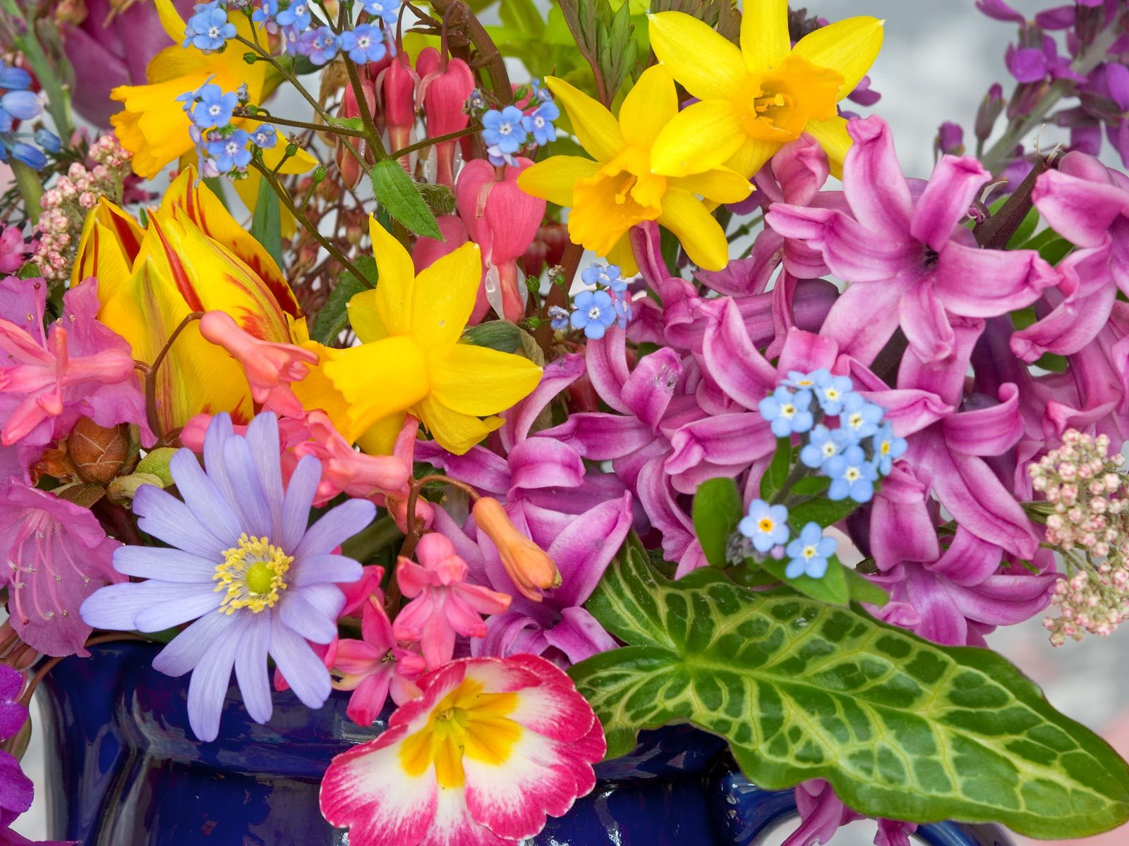 Free picture of spring flowers banner library Free Spring Flowers Wallpaper - WallpaperSafari banner library
