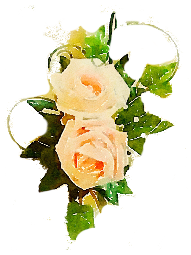 Free pictures flowers jpg black and white library FREE-flower-rose-png-peach-vine-use-freely by anjelakbm on DeviantArt jpg black and white library