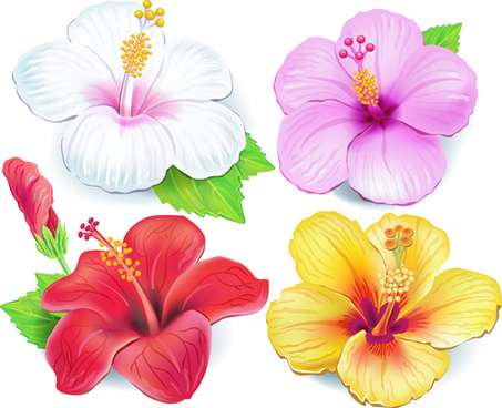 Free pictures of beautiful flowers banner transparent library Beautiful flower theme free vector download (18,421 Free vector ... banner transparent library