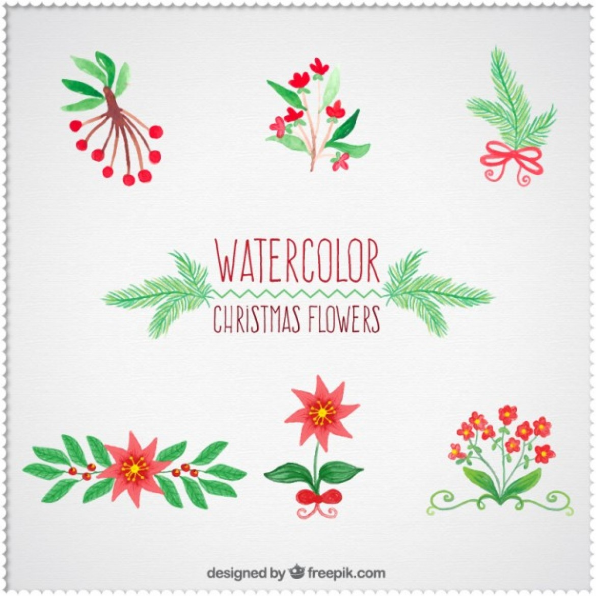 Free pictures of christmas flowers clipart royalty free download Free vector Watercolor christmas flowers collection #34457 | My ... clipart royalty free download