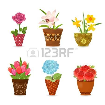 Free pictures of colorful flowers clip free library Colorful Flowers Stock Photos Images. Royalty Free Colorful ... clip free library