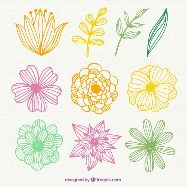 Free pictures of colorful flowers jpg black and white download Hand drawn colorful flowers Vector   Free Download jpg black and white download